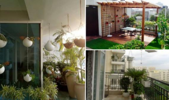 Setting up a Terrace Garden this Monsoon